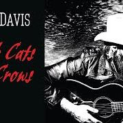 Album Black cats and crows