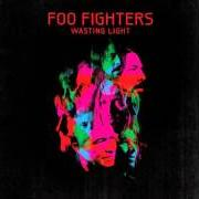 Album Wasting light