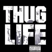 Album The best of 2pac - part 1: thug