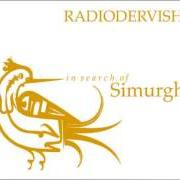 Radiodervish